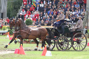 Thumbnail for 15th FEI World Pair Driving Championships