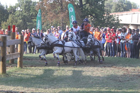 Thumbnail for Three New World Champions in Pony Driving
