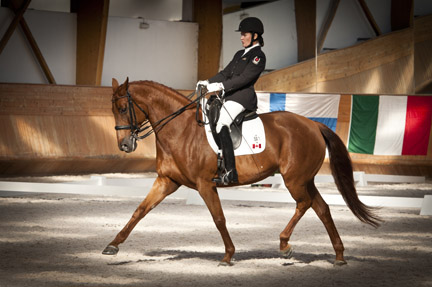 Thumbnail for Canadian Para-Equestrian Team Wins Gold in Portugal