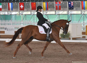 Thumbnail for Canadian Para-Equestrian Team Wins at Gold Coast Dressage Opener CPEDI3*