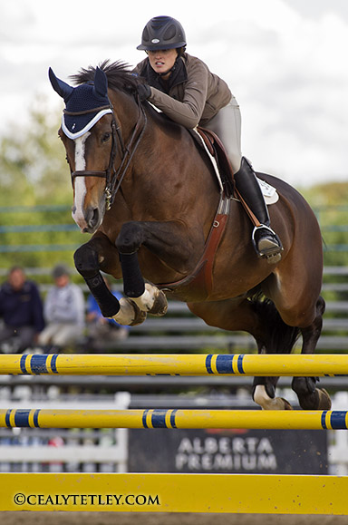 Thumbnail for Canadian Show Jumping Tournament Opens at Caledon Equestrian Park