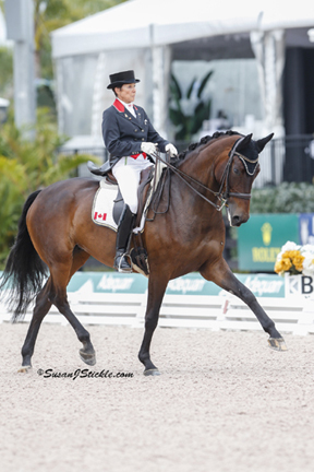 Thumbnail for CornerStone to Host CDI-W Pan Am Test Event at Caledon Equestrian Park