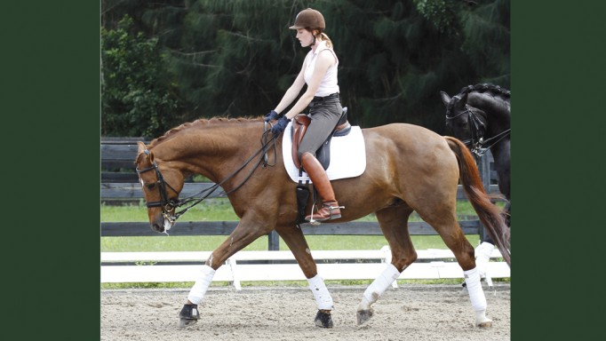 Thumbnail for Riding a Good Stretch Circle with Karen Pavicic