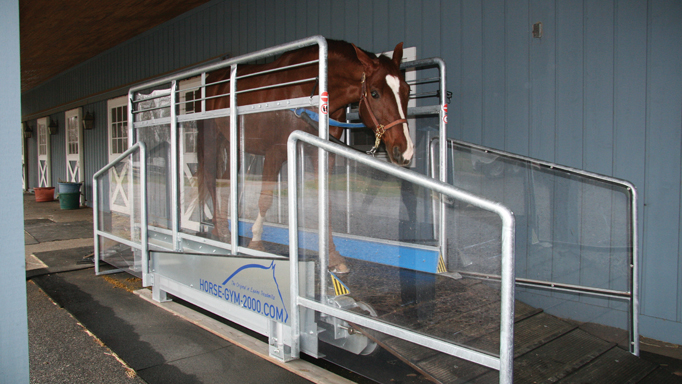 Thumbnail for Buyers' Guide – Treadmills, Equine Style