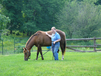 Thumbnail for Gayle Ecker Wins 2015 Equine Industry Vision Award