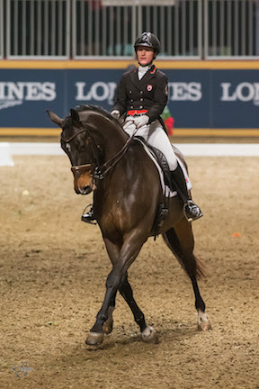 Thumbnail for Belinda Trussell Tops $20,000 Invitational Dressage Cup