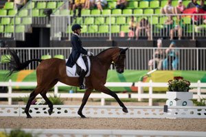Thumbnail for Klimke Secures Carrow German Lead in Olympic Eventing Ahead ofCross Country