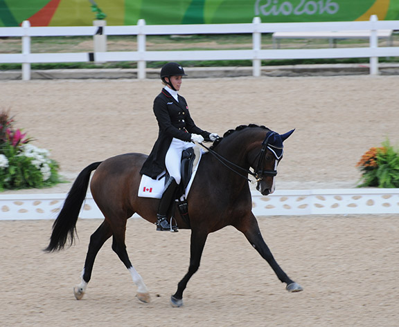 Thumbnail for Megan Lane Scores Personal Best with Caravella in Olympic Grand Prix