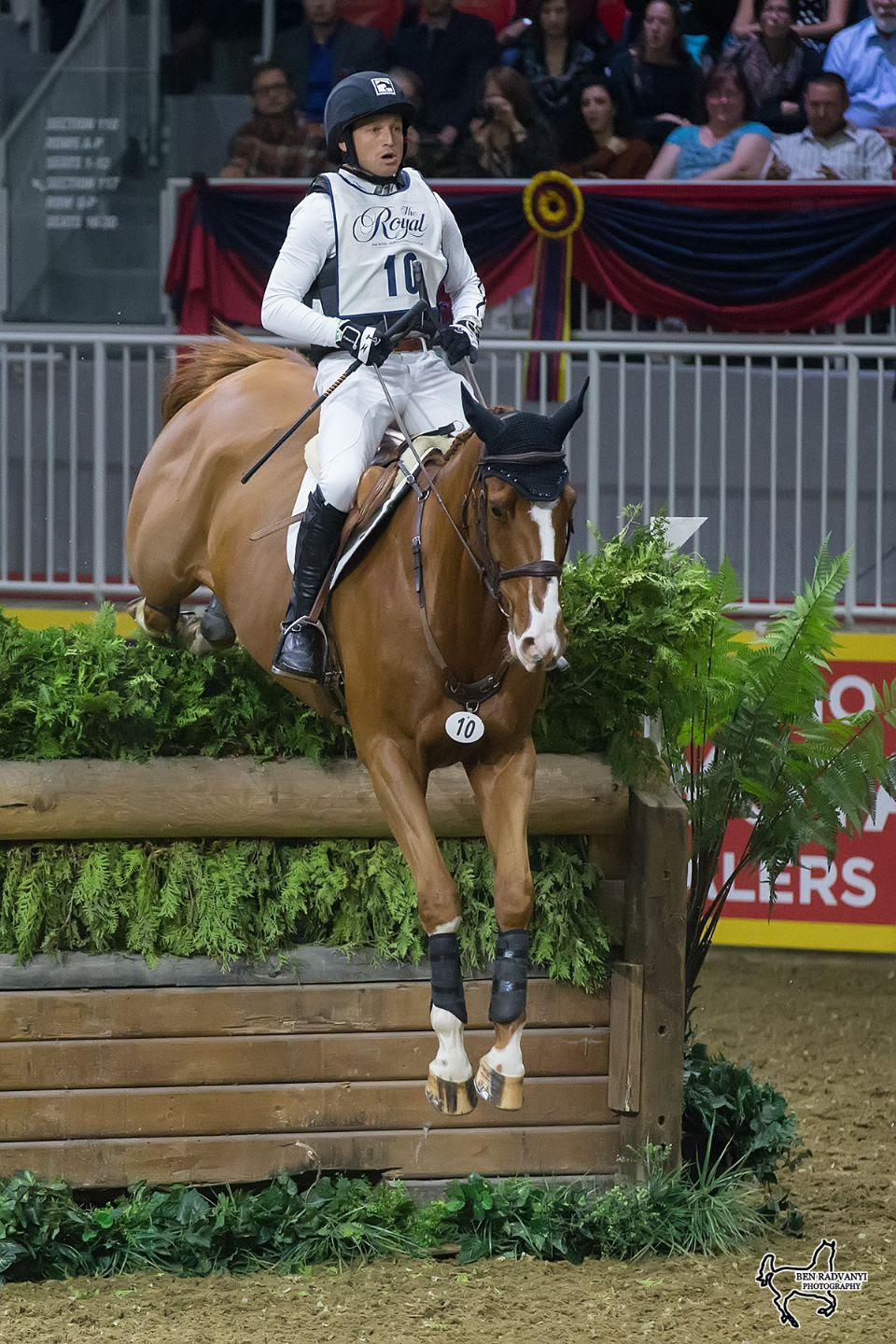 Thumbnail for Jung Wins $20,000 Horseware Indoor Eventing Challenge at The Royal