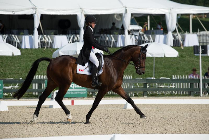 Thumbnail for Jessica Phoenix in the lead after first day of dressage at Great Meadow International