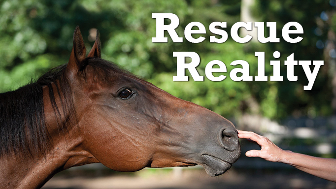 Thumbnail for Rescue and Reality