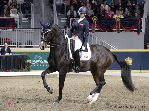 Thumbnail for Megan Lane and Caravella Repeat in Royal Invitational Dressage Cup