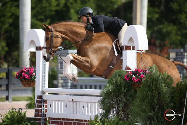Thumbnail for Melissandre Lincourt and City Lights Claim Young Hunter Championship at WEF
