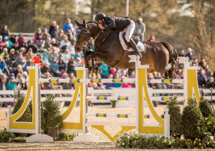 Thumbnail for Lambre Victorious in Inaugural $225,000 Kentucky CSI3* Invitational Grand Prix