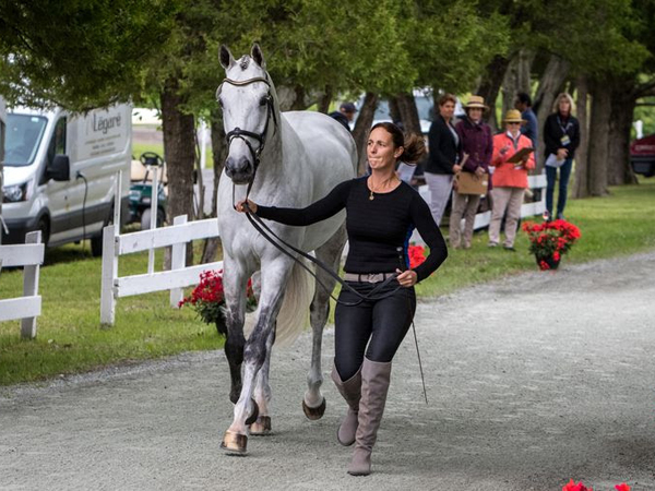 Thumbnail for MARS Incorporated Bromont CCI Three-Day Event Underway