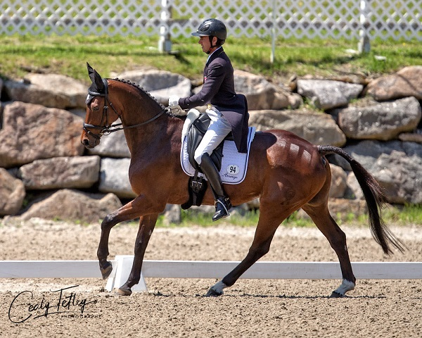 Thumbnail for CCI3* Leader at Bromont is Felix Vogg of Switzerland