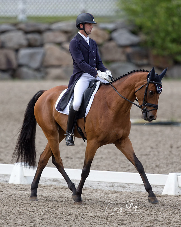 Thumbnail for Day One Dressage Sees Will Coleman Take the Lead at Bromont CCI