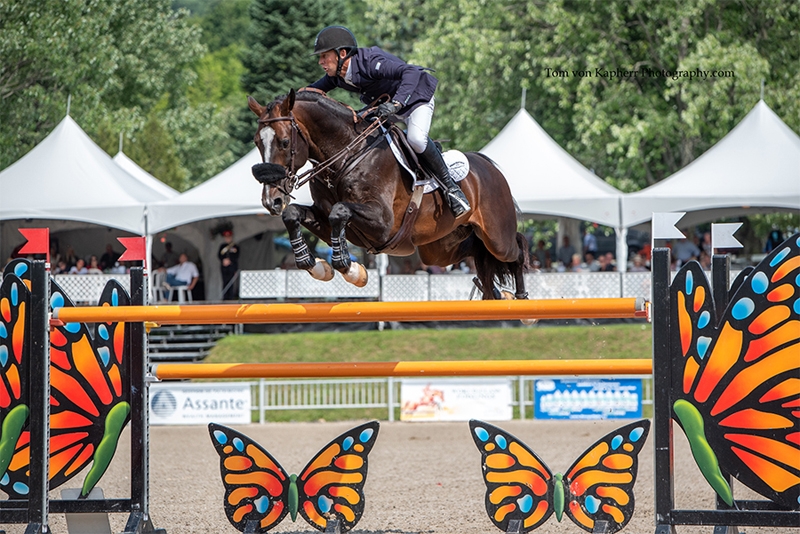 Thumbnail for Jonathan McCrea and Aristoteles V victorious in final Grand Prix at Bromont