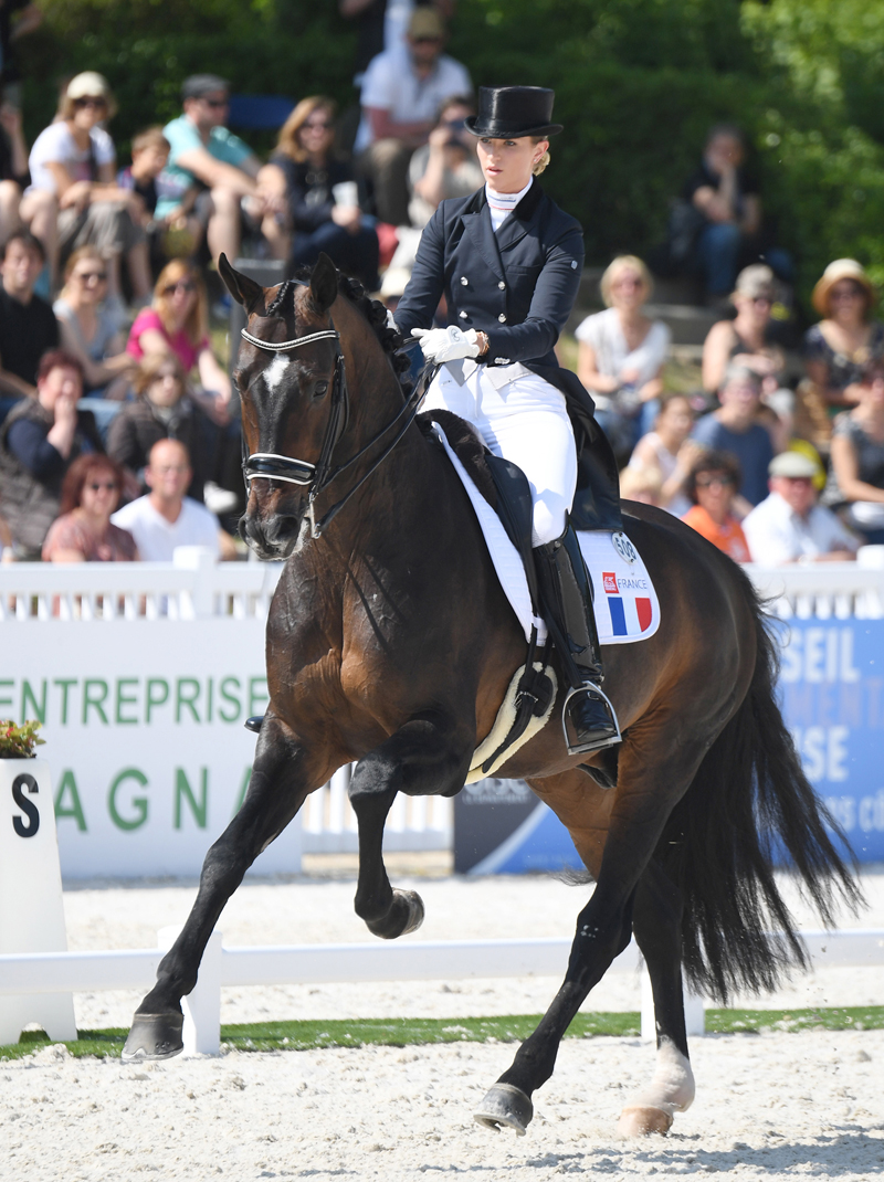 Thumbnail for No French Dressage Riders for World Equestrian Games