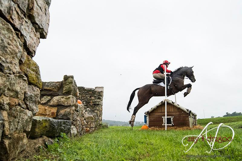 Thumbnail for Buck Davidson Wins Plantation Field CIC3* Second Year in a Row