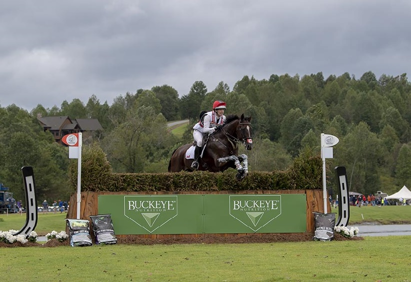 Thumbnail for Eventing Wrap-Up: Canadian Team in 11th Place after Cross-Country