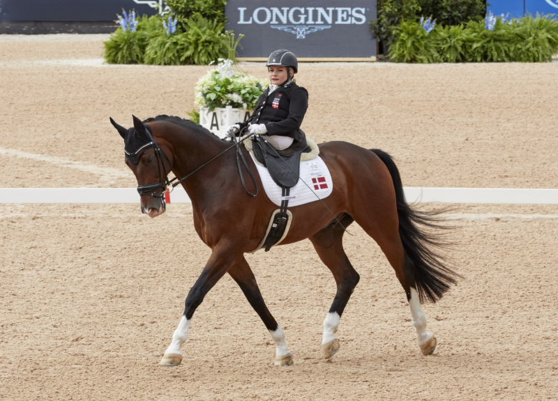 Thumbnail for Stinna is stunning while clinching her first WEG Para-Dressage gold medal