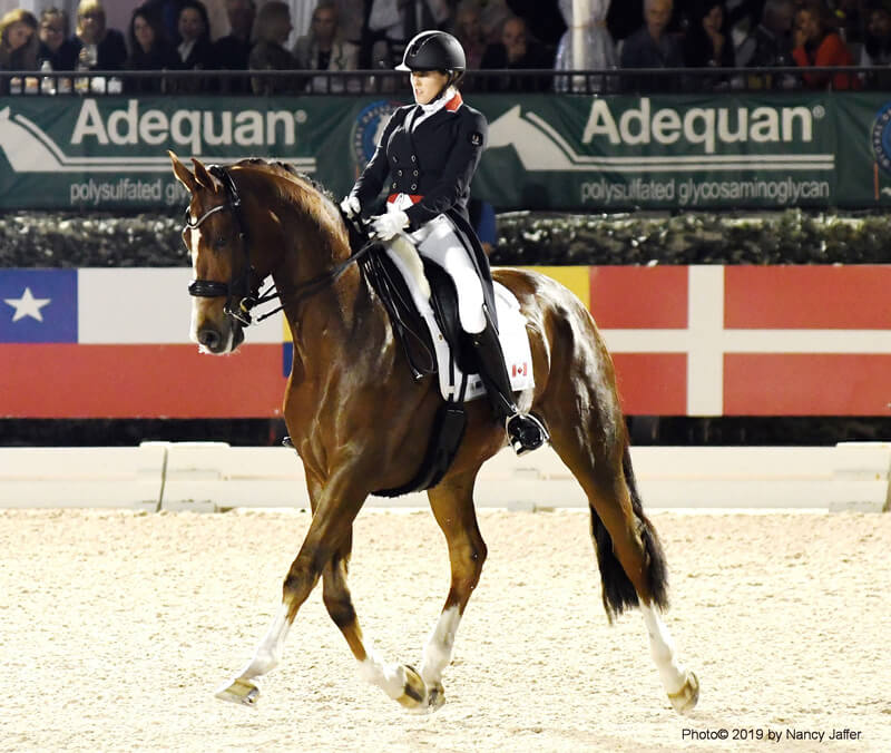 Thumbnail for Are There Too Many World Cup Dressage Qualifiers?