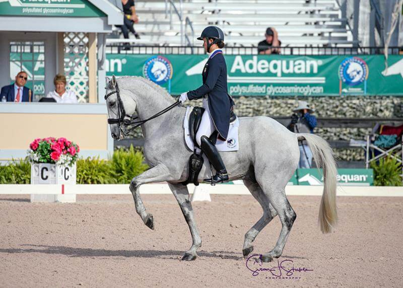 Thumbnail for Lyle takes the win in the FEI Grand Prix Special CDI3* at AGDF
