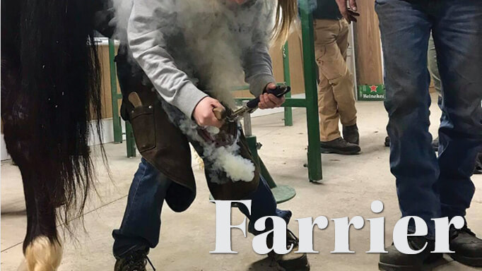 Thumbnail for Careers in the Horse Business: Becoming a Farrier