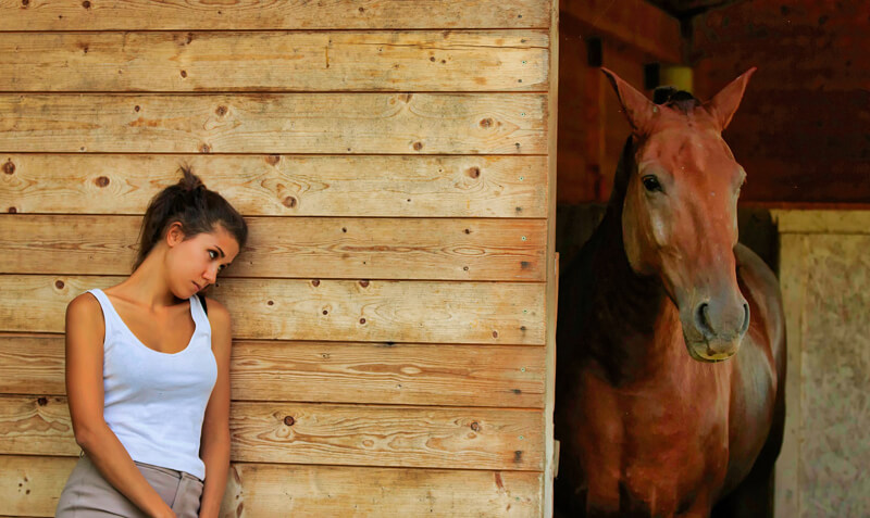 Thumbnail for Take Survey for Study on Concussions and Mental Health in Equestrians