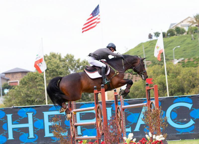 Thumbnail for John Pearce and Chantico second in $25,000 Markel Insurance Grand Prix