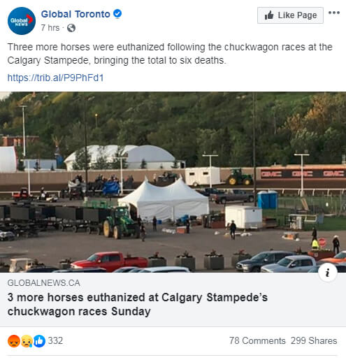 Thumbnail for 2019 Calgary Stampede Chuckwagon Deaths Total 6