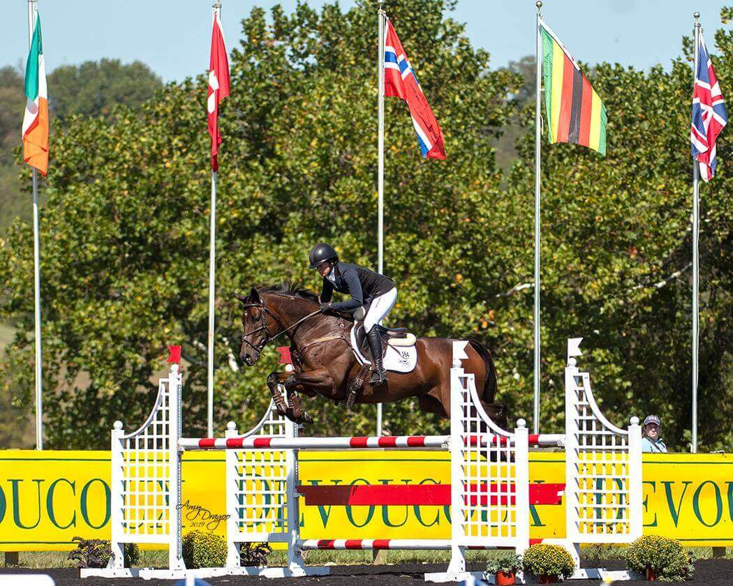 Thumbnail for Erin Sylvester and Paddy the Caddy Lead CCI4*-S at Plantation Field
