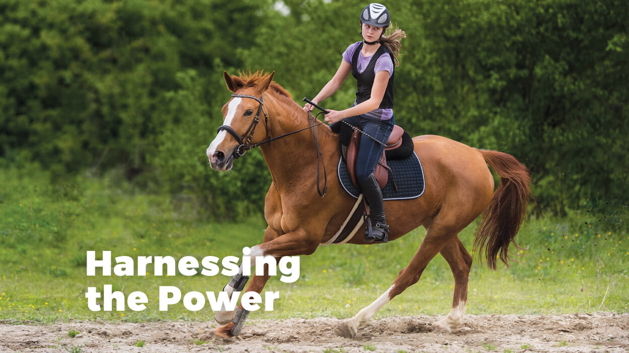 Thumbnail for Controlling Your Horse's Speed Without Using the Reins