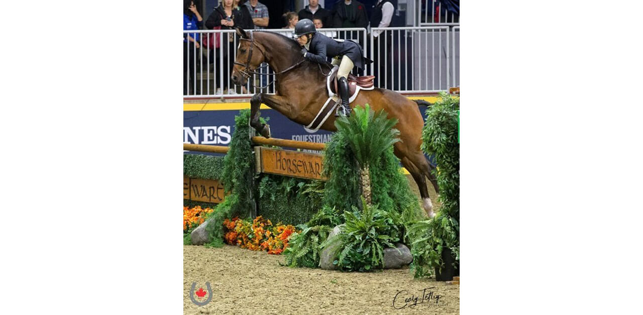 Thumbnail for Isabelle Lapierre Wins Canadian Hunter Derby Series National Championship