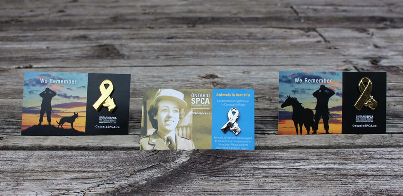 Thumbnail for Ontario SPCA and Humane Society Reveal Remembrance Day Pins