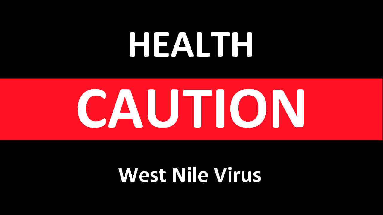 Thumbnail for One Case of West Nile Virus Has Been Reported in Ontario