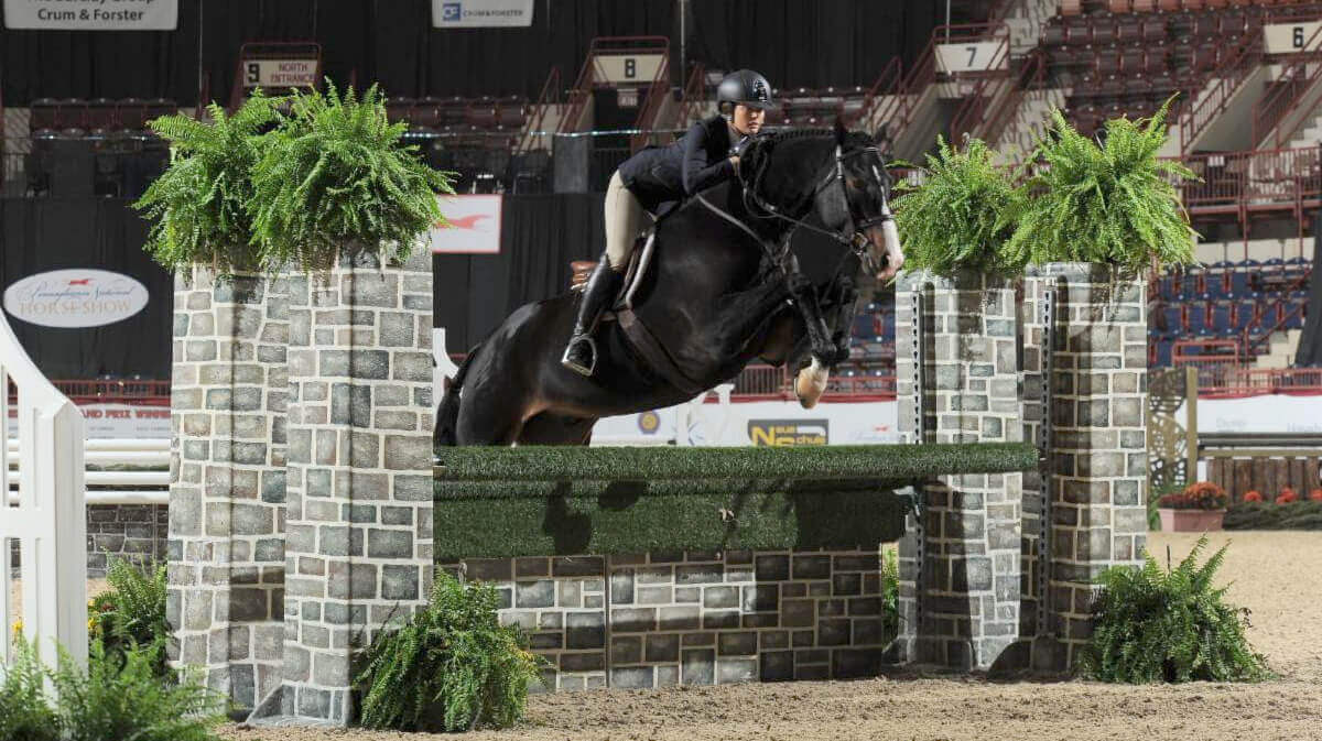 Thumbnail for Amateur Owner Hunter champions crowned at Pennsylvania National