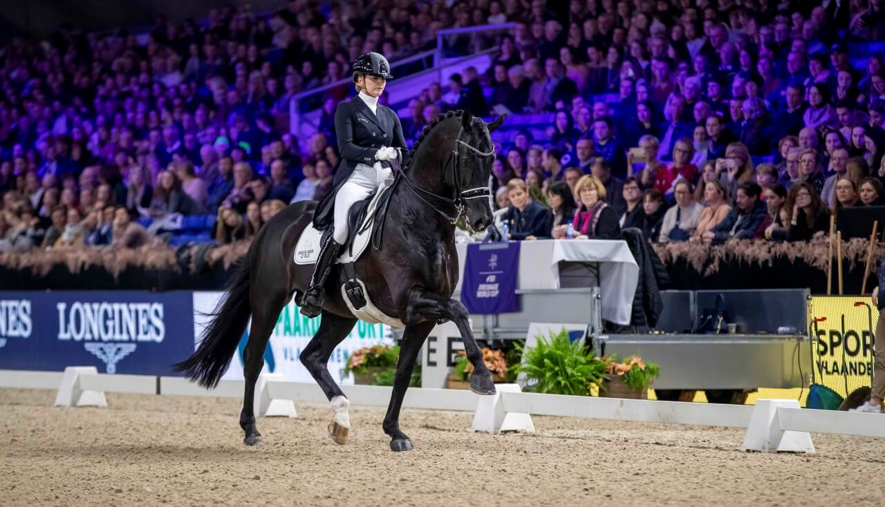 Thumbnail for Dutch duo untouchable in Grand Prix and Freestyle at Mechelen