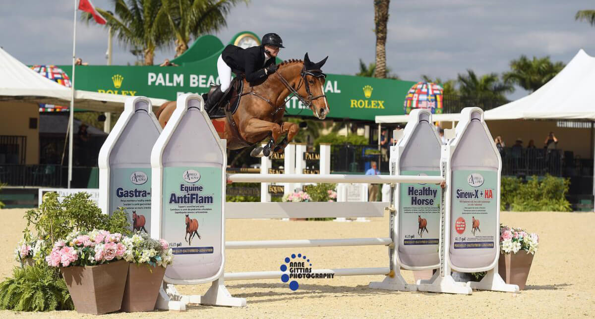 Thumbnail for Erynn Ballard wraps up Holiday & Horses With Grand Prix Win