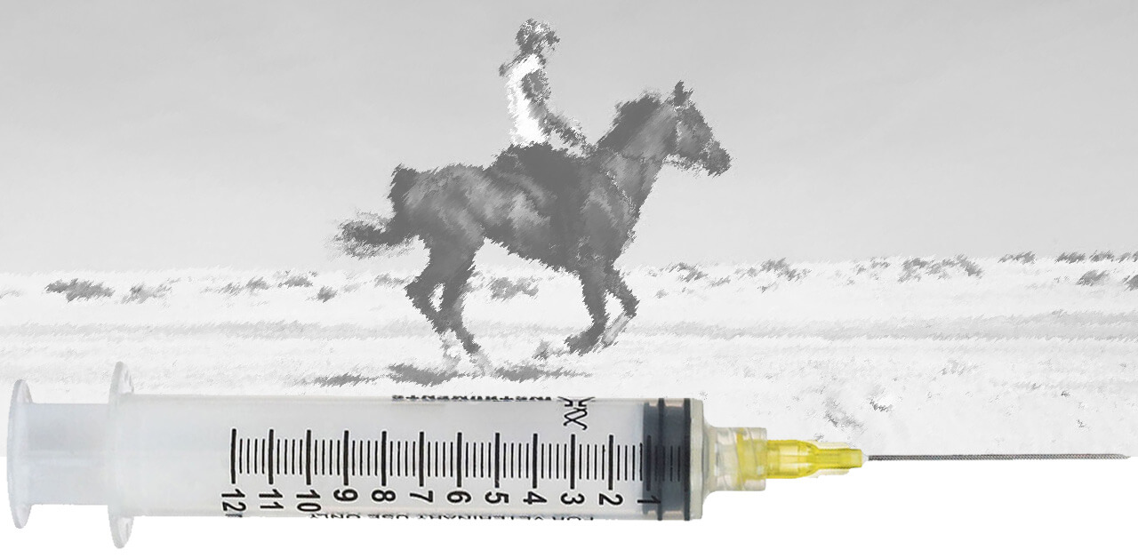 Thumbnail for Record Fines for Endurance Riders on Doped Borrowed Horses