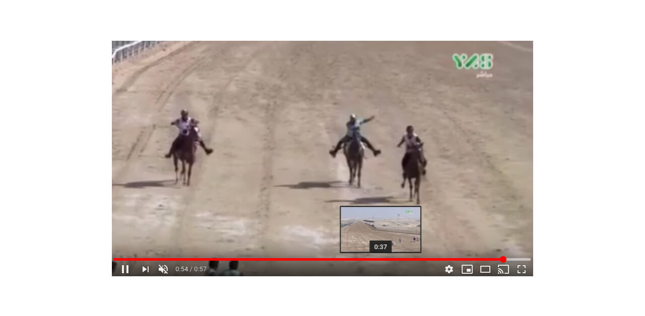 Thumbnail for Endurance Rider Suspended for Kicking Horse '27 times' at the Finish