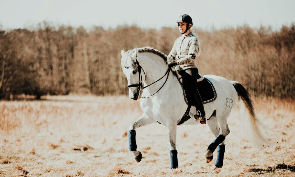 Thumbnail for The Harmonious Seat: Make the Move to Improve Your Riding
