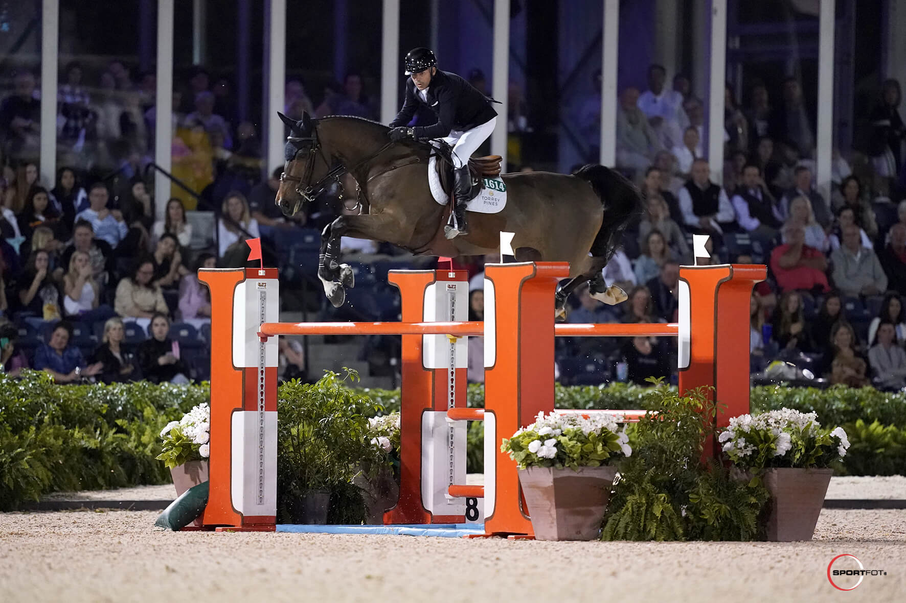 Thumbnail for Eric Lamaze 2nd in NetJets Grand Prix CSI2* at WEF