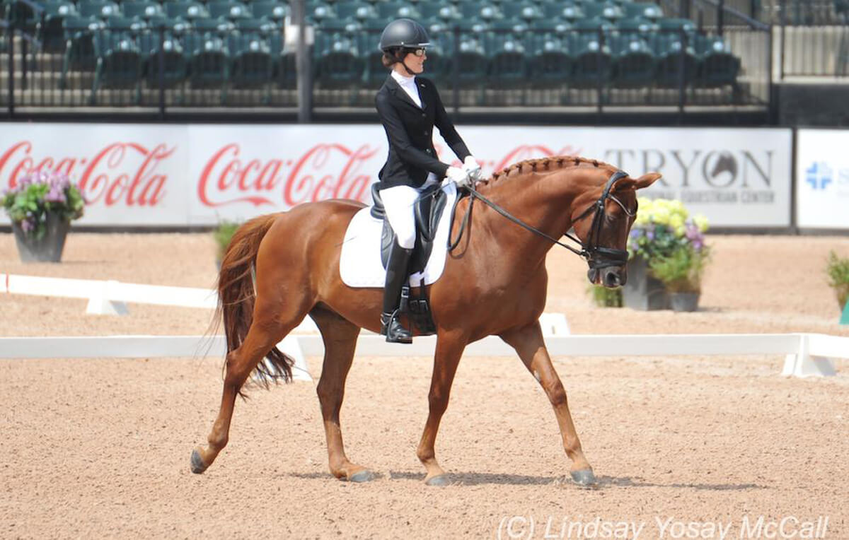 Thumbnail for U.S. Para-Dressage Team dominates first Paralympic Qualifier in Florida