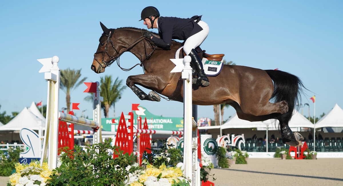 Thumbnail for McLain Ward and Catoki score CSI3* victory during WEF 3