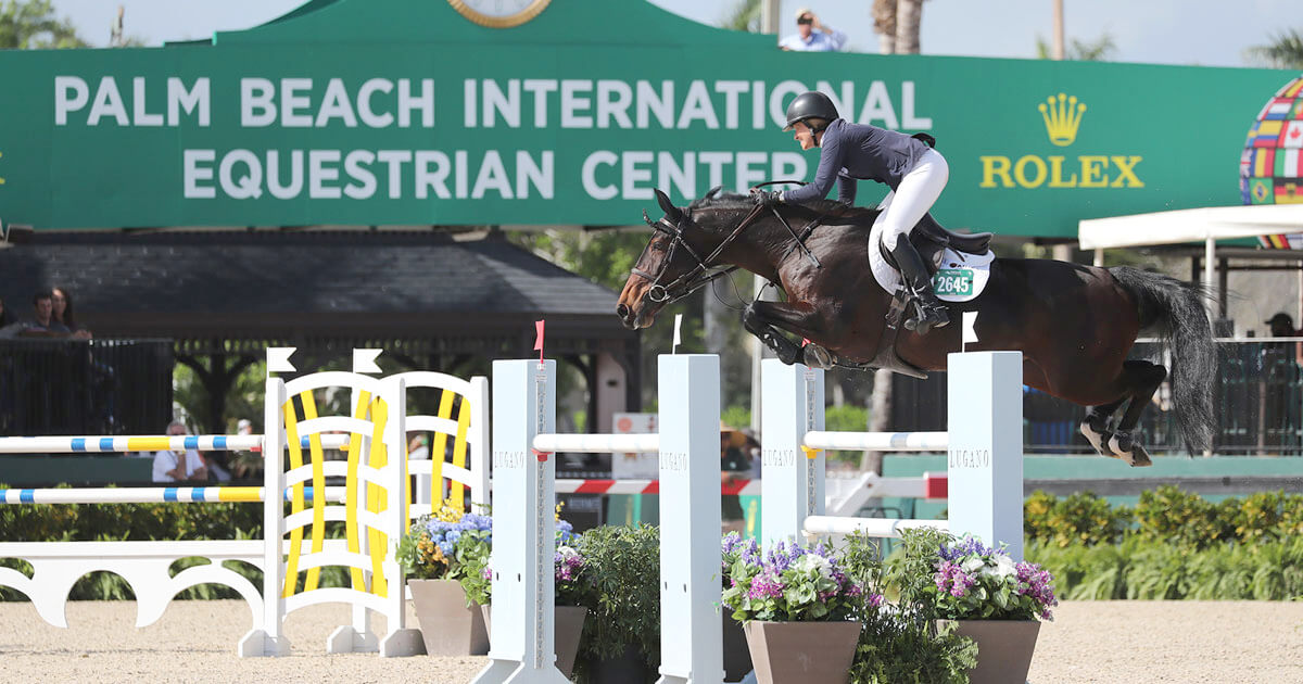 Madden and Bloomberg Win Big on Opening Day of WEF Week 7