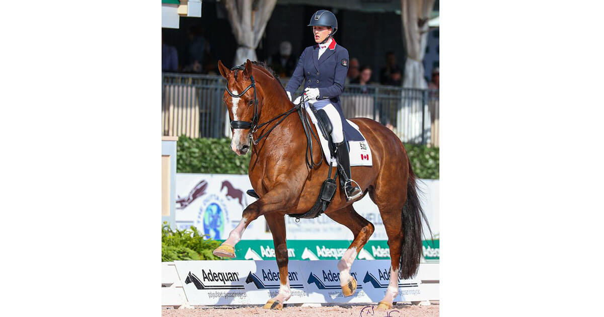 Another personal best for Brittany Fraser-Beaulieu and All In at AGDF