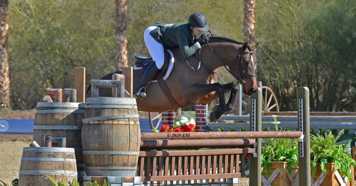 Thumbnail for Hunter and Jumper champions named at Desert International Horse Park