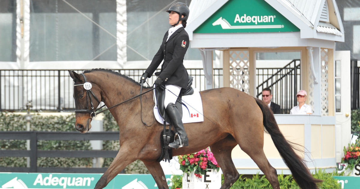 EC updates regarding compensating aids in Equestrian Para-Sport